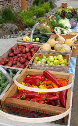 Nisqually Community Garden Produce